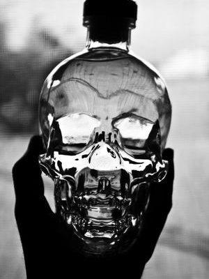 vodka-negro-bebida