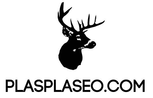 plasplaseo logo